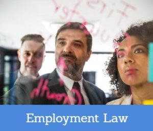 Employment Law Solicitors Services